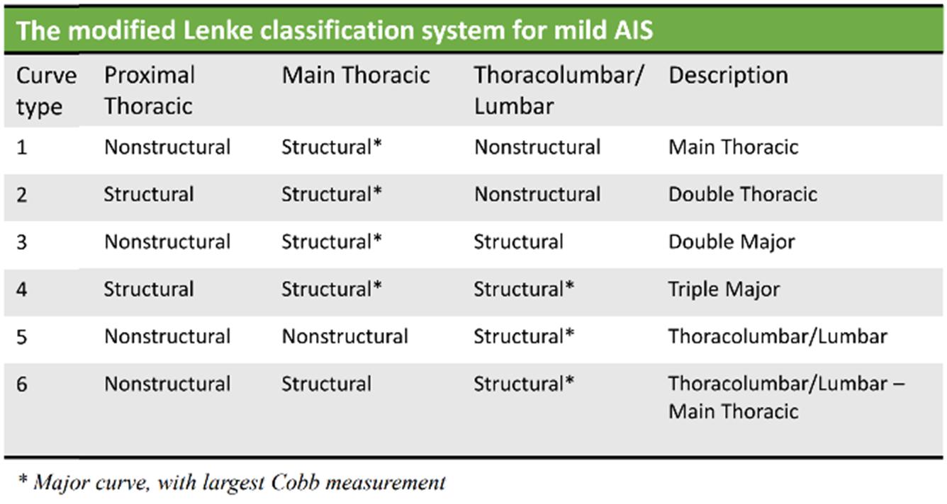 m-Lenke classification